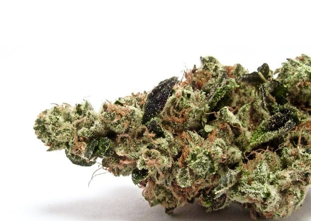 Shopping List: Ten hot cannabis strains of the summer