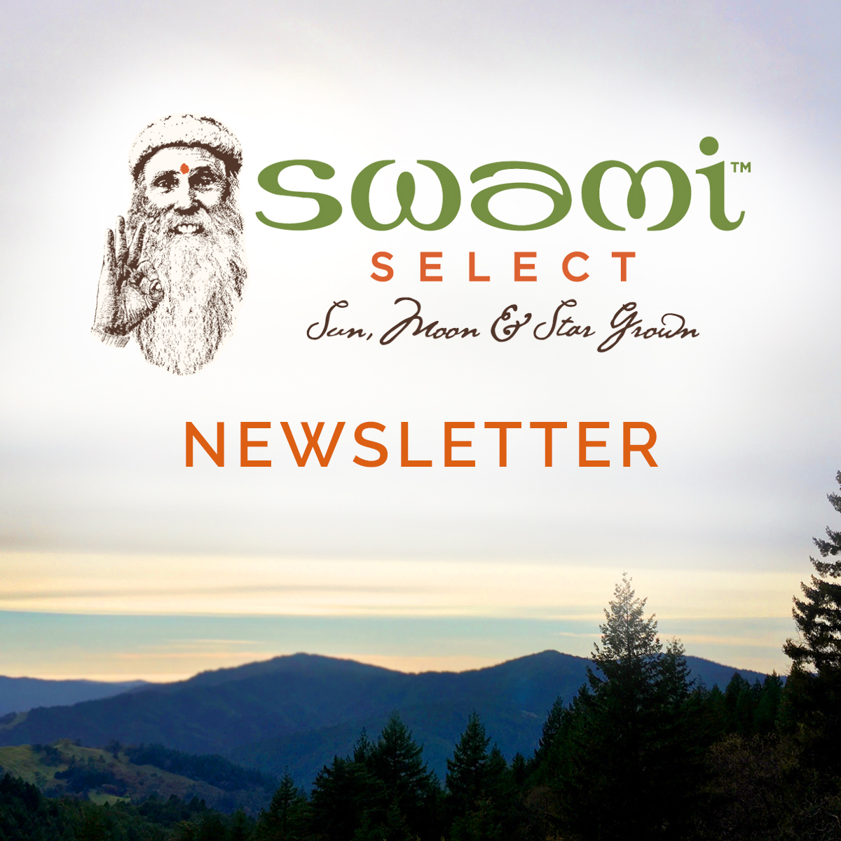 Swami Select Newsletter
